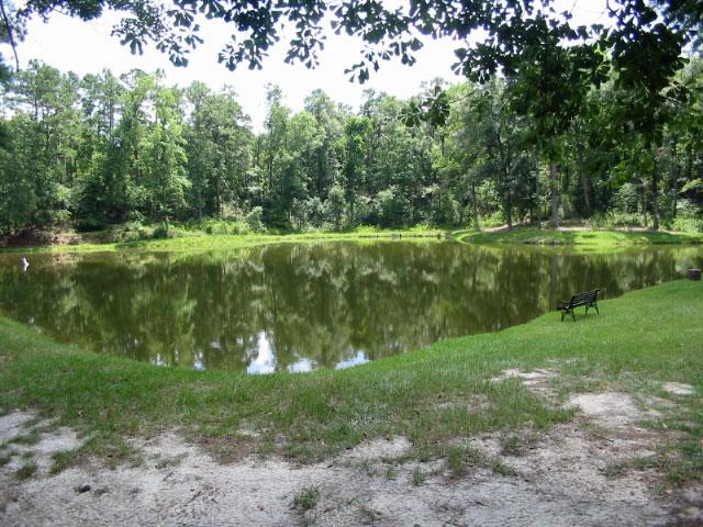 Home 118 acres pond timber hephzibah richmond for Building a 1 acre pond